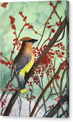 Cedar Wax Wing Canvas Print by Sharon Farber