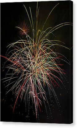 Celebrating The 4th Canvas Print by Garry Gay