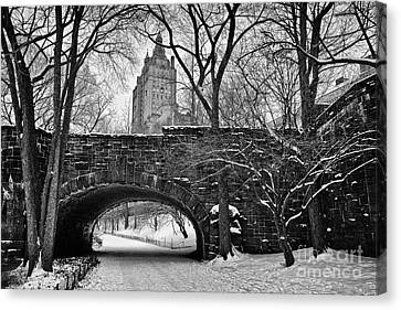 Central Park And The San Remo Building Canvas Print by John Farnan