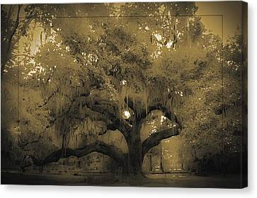 Centurion Oak Canvas Print by DigiArt Diaries by Vicky B Fuller