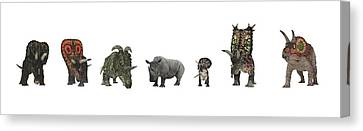 Cerapod Dinosaurs Compared To A Rhino Canvas Print by Walter Myers