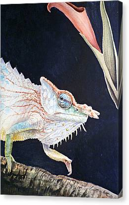 Chameleon Canvas Print by Irina Sztukowski