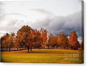 Changing  Canvas Print by Sue OConnor