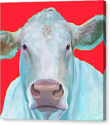 Charolais Cow Painting On Red Background Canvas Print by Jan Matson