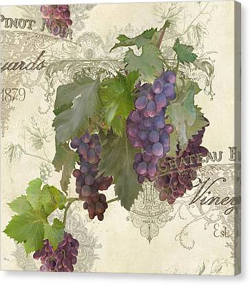 Chateau Pinot Noir Vineyards - Vintage Style Canvas Print by Audrey Jeanne Roberts