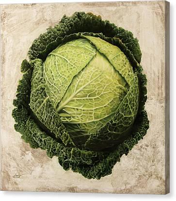Checcavolo Canvas Print by Danka Weitzen