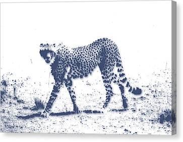 Cheetah 2 Canvas Print by Joe Hamilton