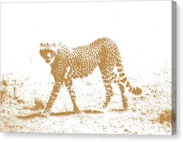 Cheetah 3 Canvas Print by Joe Hamilton