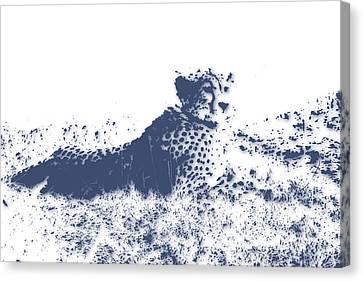Cheetah Canvas Print by Joe Hamilton