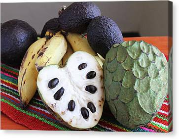 Cherimoya Fruit With Bananas And Avocados Canvas Print by Janet Millard
