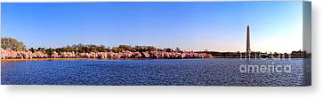 Cherry Trees On The Tidal Basin And Washington Monument  Canvas Print by Olivier Le Queinec