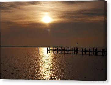 Chesapeake Morning Canvas Print by Bill Cannon
