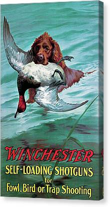 Chesapeake Retriever With Duck Canvas Print by Unknown