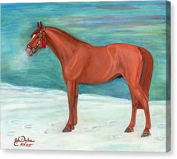 Chestnut Horse Canvas Print by Anna Folkartanna Maciejewska-Dyba