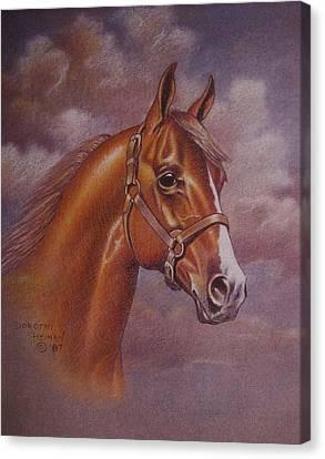 Chestnut Quarter Horse Canvas Print by Dorothy Coatsworth