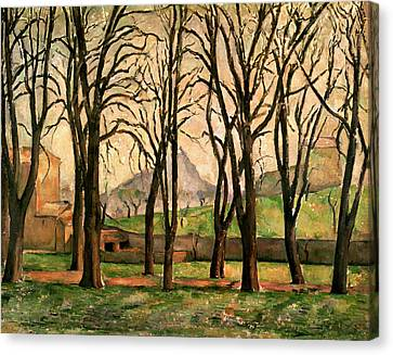 Chestnut Trees At The Jas De Bouffan Canvas Print by Paul Cezanne