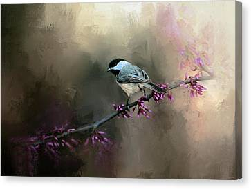 Chickadee In The Light Canvas Print by Jai Johnson