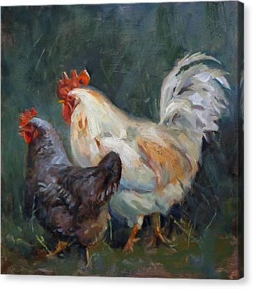 Chicken Tales Canvas Print by Donna Shortt