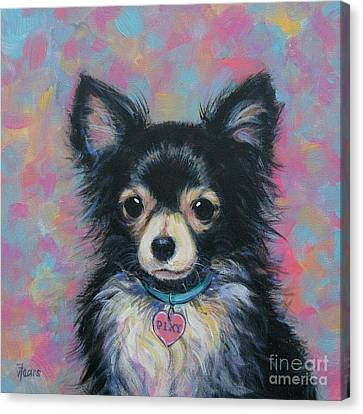 Chihuahua Canvas Print by Vickie Fears