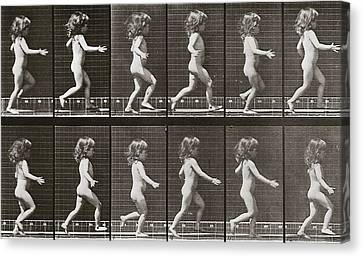 Child Running, Plate 469 From Animal Locomotion, 1887 Canvas Print by Eadweard Muybridge