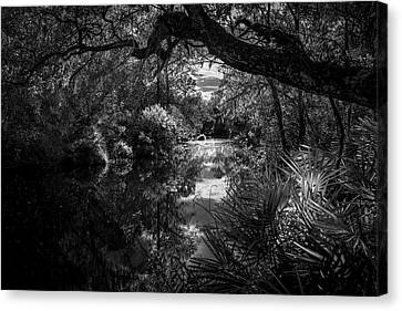 Childhood Creek Canvas Print by Marvin Spates
