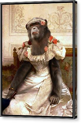 Chimp In Gown  Canvas Print by Gravityx9  Designs