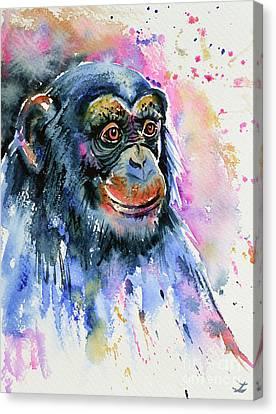 Chimp Canvas Print by Zaira Dzhaubaeva