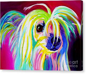 Chinese Crested - Fancy Pants Canvas Print by Alicia VanNoy Call