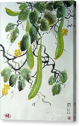 Chinese Cucumber Canvas Print by Birgit Moldenhauer