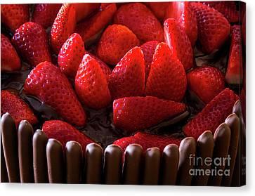 Chocolate And Strawberry Cake Canvas Print by Carlos Caetano