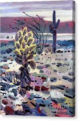 Cholla Saguargo And Ocotillo Canvas Print by Donald Maier