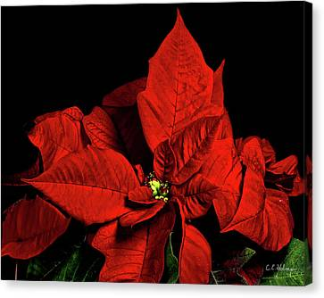 Christmas Fire Canvas Print by Christopher Holmes