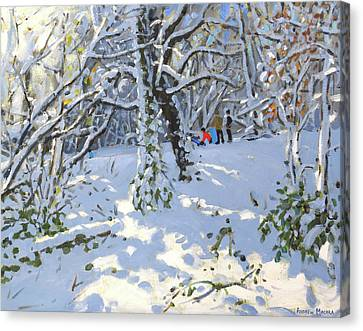 Christmas Sledging In Allestree Woods Canvas Print by Andrew Macara