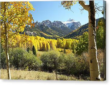 Cimarron Gold Canvas Print by Eric Glaser