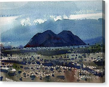 Cinder Cone Death Valley Canvas Print by Donald Maier