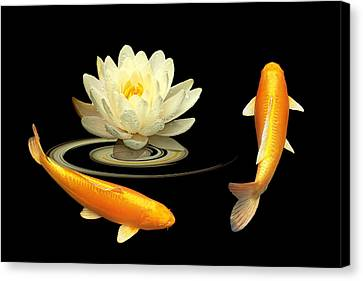 Circle Of Life - Koi Carp With Water Lily Canvas Print by Gill Billington