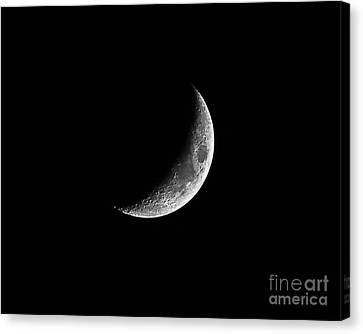 Classic Crescent Cropped Canvas Print by Al Powell Photography USA