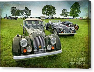 Classic Morgans Canvas Print by Adrian Evans
