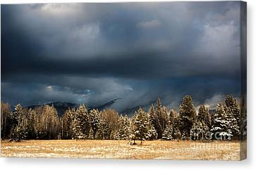 Clinging Clouds Of Winter Canvas Print by Janie Johnson