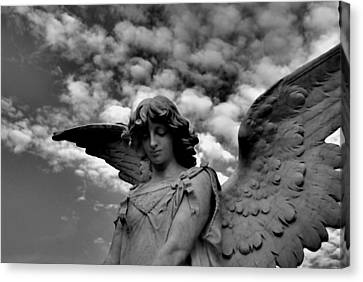 Clouded Canvas Print by Phil Bongiorno