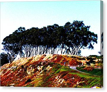 Coastal Cliff Canvas Print by Tim Tanis
