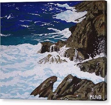 Coastal Falls Canvas Print by Margaret Brooks