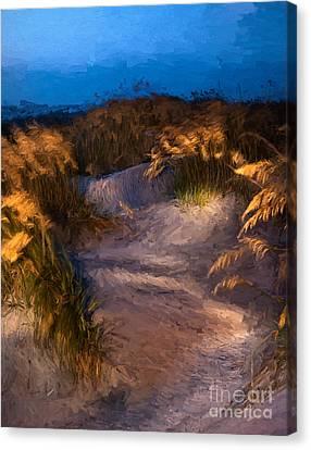 Coastal Passage Canvas Print by Dan Carmichael
