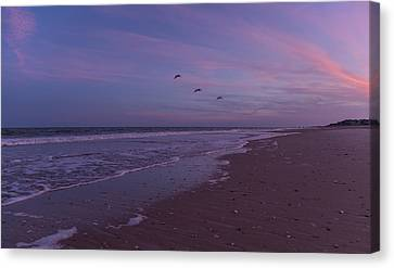 Coastal Patrol Canvas Print by Betsy C Knapp