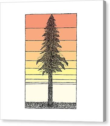 Coastal Redwood Sunset Sketch Canvas Print by Hinterlund