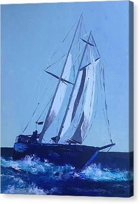 Coastguard Canvas Print by Shannon Celia