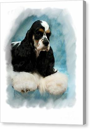 Cocker Spaniel 814 Canvas Print by Larry Matthews