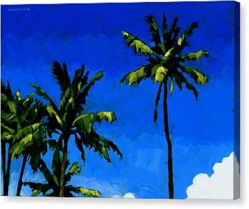 Coconut Palms 5 Canvas Print by Douglas Simonson