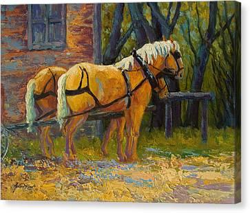 Coffee Break - Draft Horse Team Canvas Print by Marion Rose