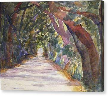 Coffin Point Road Canvas Print by Stella Schaefer